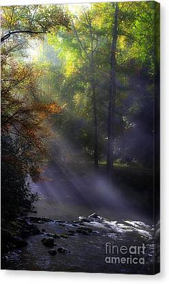 The River's Embrace Canvas Print by Michael Eingle