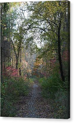 The Road Ahead No.2 Canvas Print by Neal Eslinger