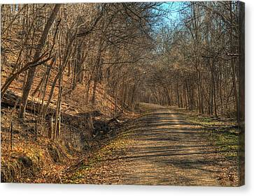 The Road Goes Ever On Canvas Print by William Fields