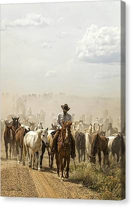 The Road Home 2013 Canvas Print