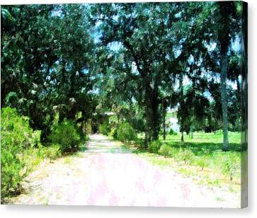 Gravel Road Canvas Print - The Road Home by Florene Welebny
