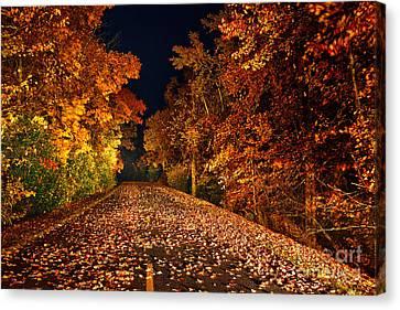 The Road Less Traveled - Blue Ridge Parkway I Canvas Print