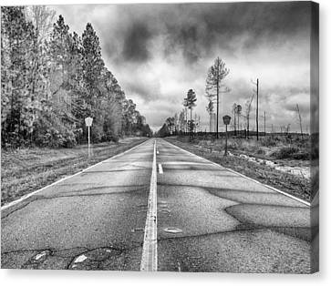 The Road Less Traveled Canvas Print by Howard Salmon
