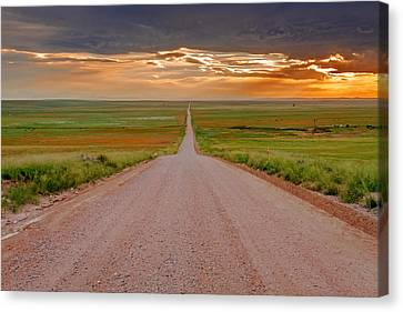 The Road Less Traveled Canvas Print by Teri Virbickis