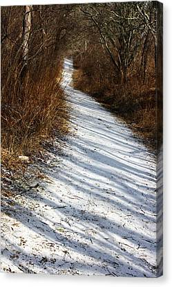 The Road Not Taken Canvas Print by Anne Babineau