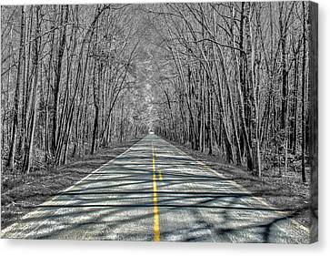 The Road Canvas Print by Steven  Taylor