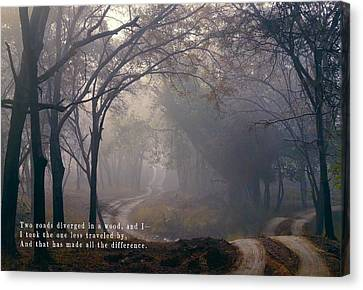 The Road Taken In Life Canvas Print by Daniel Hagerman