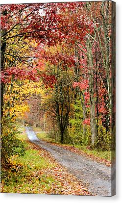 The Road Through Fall Canvas Print by Robert Camp