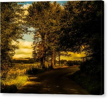 Canvas Print featuring the photograph The Road To Litlington by Chris Lord