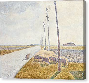 The Road To Nieuport Canvas Print by Willy Finch