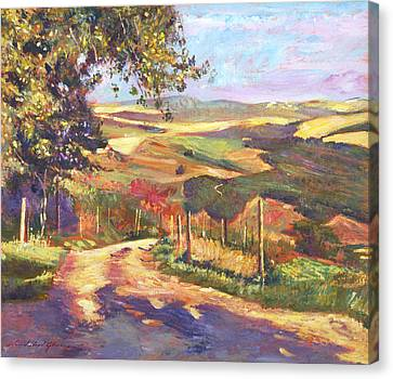 The Road To Tuscany Canvas Print by David Lloyd Glover