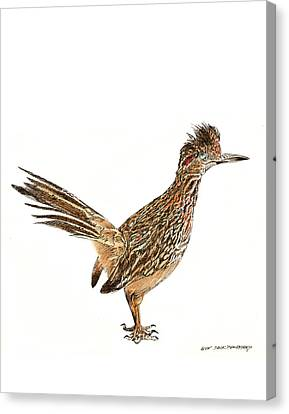 Roadrunner Canvas Print - The Roadrunner State Bird Of New Mexico by Jack Pumphrey