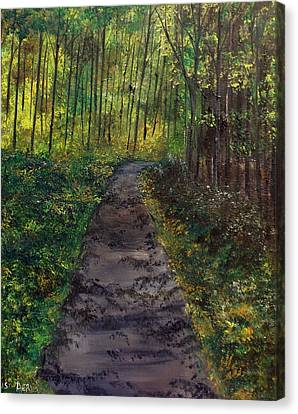 The Roads Not So Easy Canvas Print by Lisa Aerts