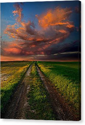 The Roads We Take Canvas Print by Phil Koch