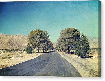 The Roads We Travel Canvas Print by Laurie Search