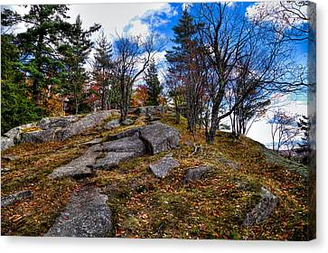 The Rocks Above Eagle Bay IIi Canvas Print by David Patterson