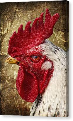 The Rooster Canvas Print by Angela Doelling AD DESIGN Photo and PhotoArt