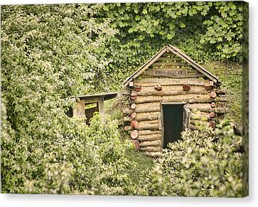 The Root Cellar Canvas Print by Heather Applegate