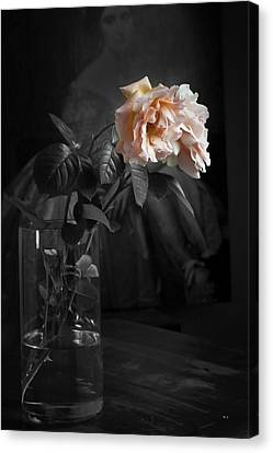 The Rose Grew Pale And Left Her Cheek Canvas Print by Theresa Tahara