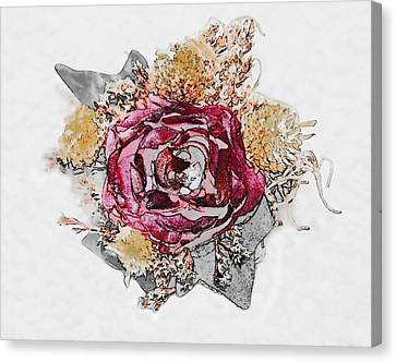 The Rose Canvas Print by Susan Leggett