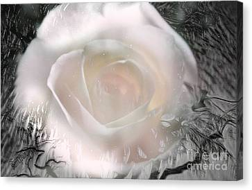 The Rose The Symbol Of Love Canvas Print