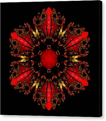 The Ruby Flame Broach Canvas Print