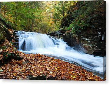 The Rushing Waterfall Canvas Print