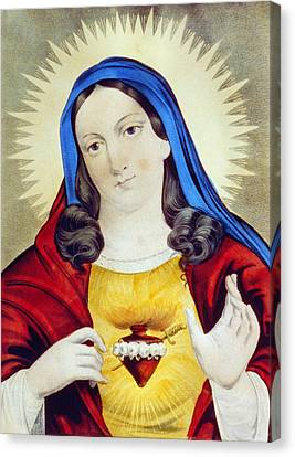 The Sacred Heart Of Mary Canvas Print by Bill Cannon