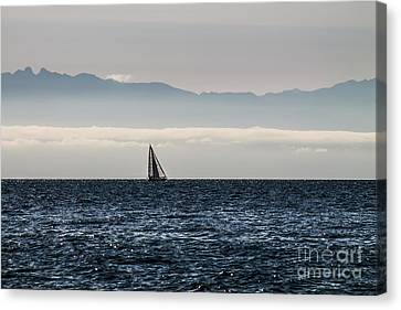 The Sail Boat Horizon Canvas Print