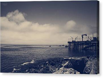The Salty Air Canvas Print by Laurie Search