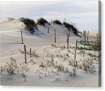 The Sands Of Obx Canvas Print by Greg Reed