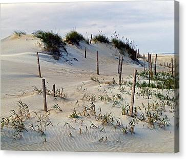 The Sands Of Obx II Canvas Print by Greg Reed