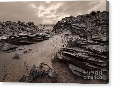 The Sands Of Time 1 Canvas Print by Julian Cook