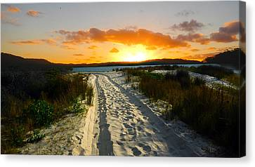 Canvas Print featuring the photograph The Sandy Way by Sandro Rossi