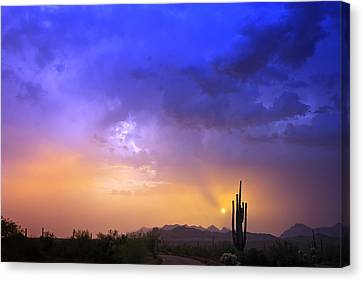 The Scent Of Rain Canvas Print by Rick Furmanek