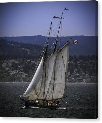 The Schooner Pacific Grace Canvas Print