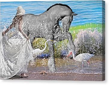 The Sea Horse Canvas Print by Betsy Knapp
