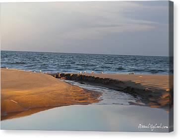 The Sea Overcomes Canvas Print by Robert Banach