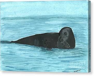 The Seal Canvas Print by Tracey Williams