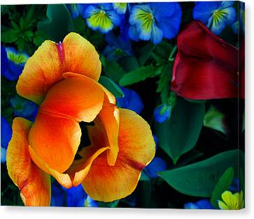 Canvas Print featuring the photograph The Secret Life Of Tulips by Rory Sagner