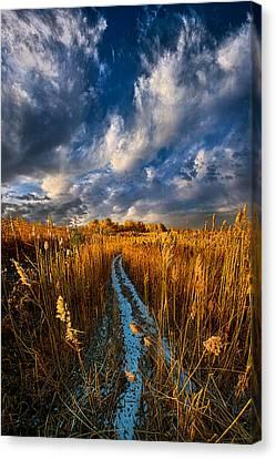 The Secret Path Canvas Print by Phil Koch