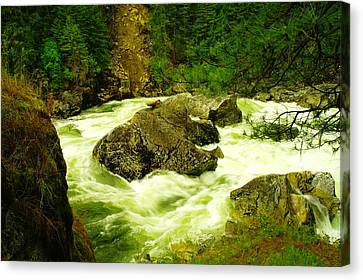 The Selway River Canvas Print by Jeff Swan