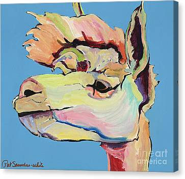 Llama Canvas Print - The Sentinel by Pat Saunders-White