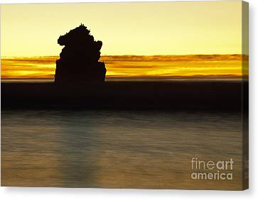 Canvas Print featuring the photograph The Sentinel by Terry Garvin