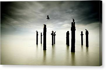 The Sentinels Canvas Print
