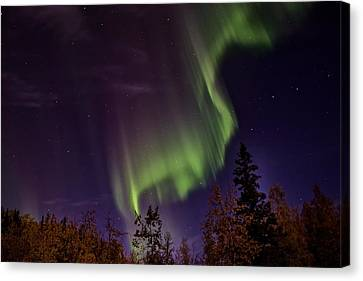 The September Aurora Fairbanks Alaska Canvas Print