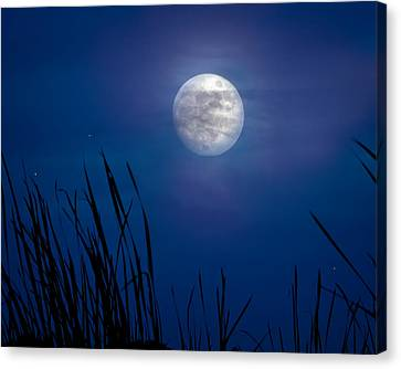 The Seventh Moon Canvas Print by Mark Andrew Thomas