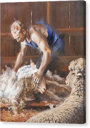 The Shearing Canvas Print by Mia DeLode