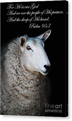 The Sheep Of His Hand Canvas Print