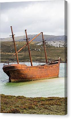 The Shipwreck Of The Lady Elizabeth Canvas Print by Ashley Cooper